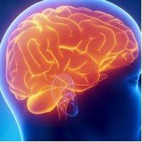 사람의 마음을 읽는 기술에 대한 특허가 크게 증가하고 있다.