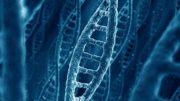 네덜란드 과학자들이 인간 DNA에 숨겨진 두 번째 층의 정보를 발견하다.