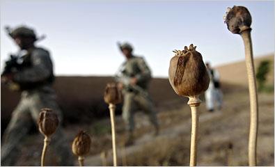 은퇴한 CIA 요원, '우리가 아프가니스탄에서 아편을 운영한다'