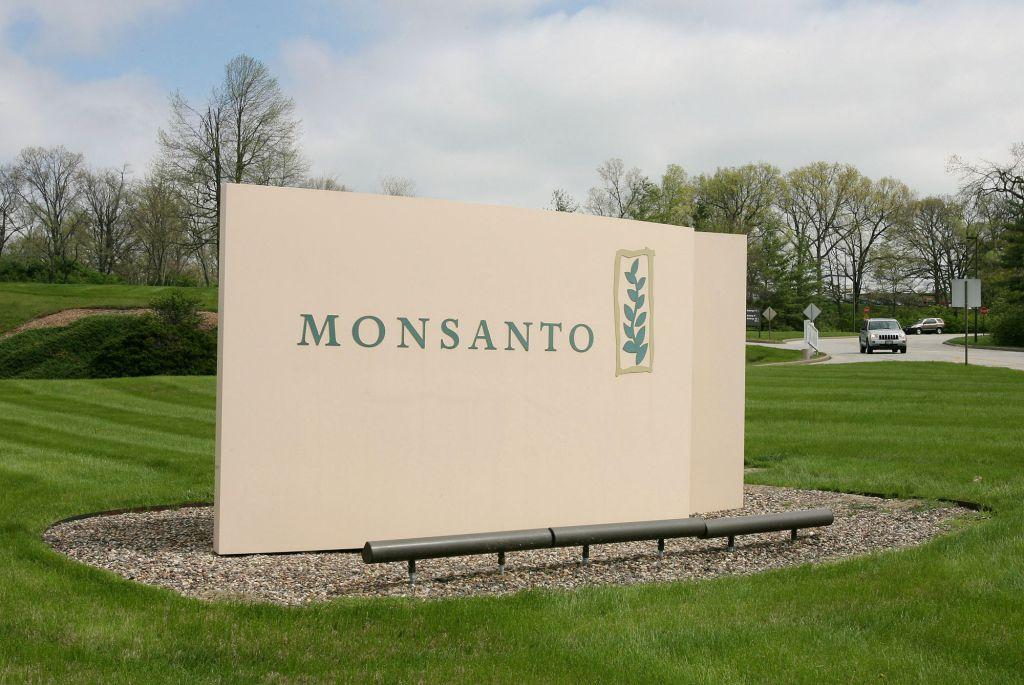 몬산토는 GMO 씨앗 판매 감소로 인해 2,600개의 일자리를 삭감한다.