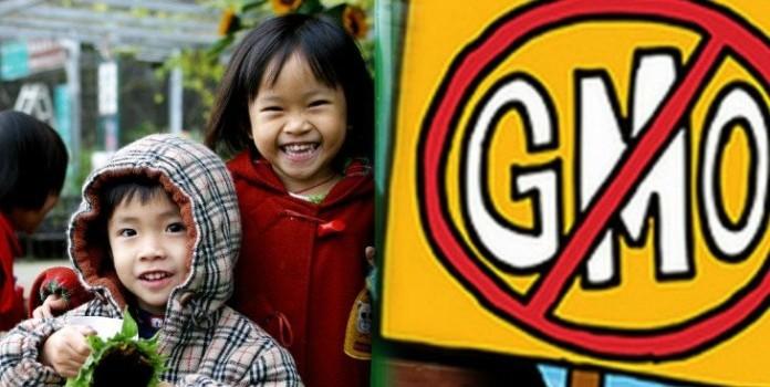 대만은 다음 학기부터 학교 메뉴에서 GMO 식품을 금지한다.