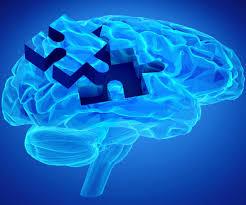 노화에 대한 부정적인 생각을 가진 사람이 알츠하이머 병에 걸리기 쉽다.