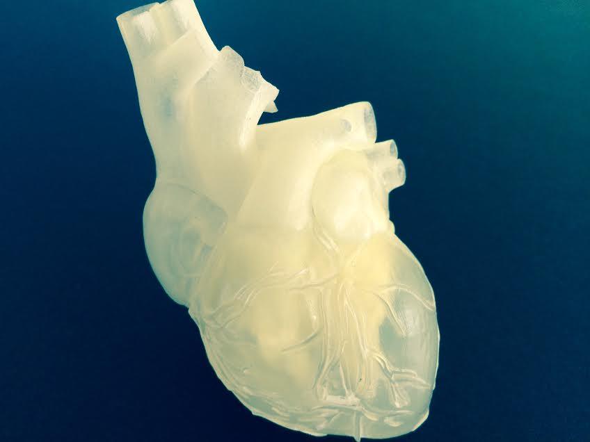 러시아 연구자들은 15년 뒤 3D 프린터를 이용한 인간 장기 이식이 가능하다고 말한다.