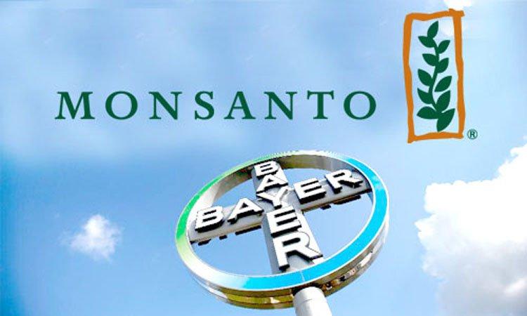 종자산업을 거대 농업 기업들에게 넘기는 세계은행.