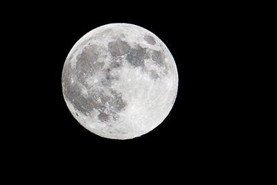 2018년에 스페이스엑스는 달에 민간인을 보낸다.