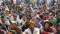 불법 이민자를 의무적으로 수용하는 개정안을 준비 중인 유럽연합