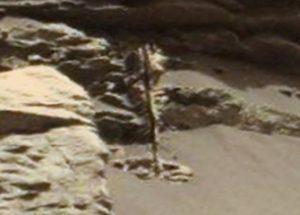 화성 대기의 방사선 그리고 착륙선이 찍은 사진 속의 나무