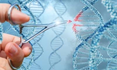 최초로 환자의 유전자를 몸 안에서 변형시키는 치료술이 실시되다.