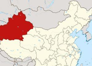 신장 주민들을 추적하고 관리하는 데이터베이스를 운영하는 중국