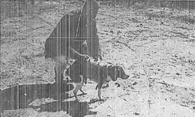 개를 원격 조종하는 마인드 컨트롤 실험을 실시한 CIA