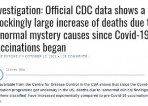 미국의 코로나 백신 접종과 원인을 알 수 없는 사망의 상관관계 조사
